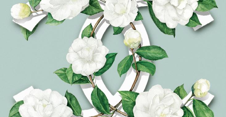 Partez à la découverte des serres de Chanel à Jardins ...
